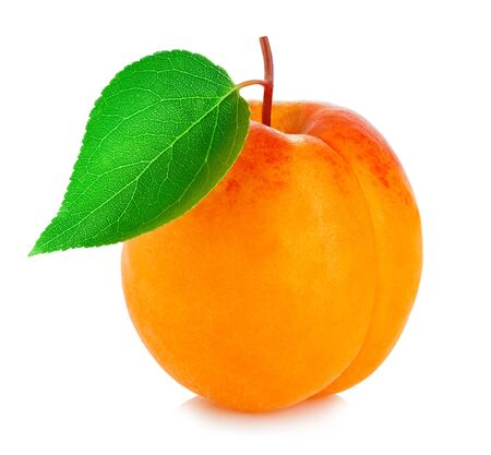 Ripe apricot with leaf close-up isolated on a white background.