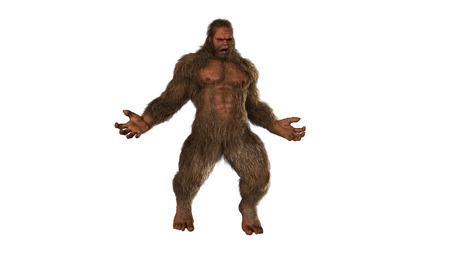 bigfoot: Sasquatch bigfoot seperated on white background