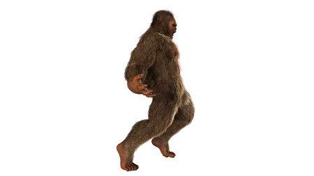 Sasquatch bigfoot seperated on white background