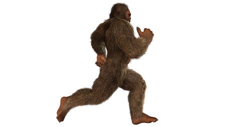 Sasquatch bigfoot seperated on white background