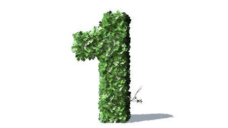 녹색 담쟁이 잎의 번호 1 알파벳