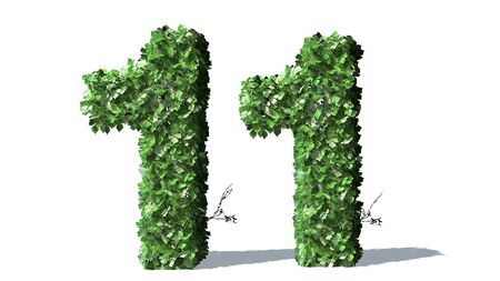 number 11: Number 11 alphabet of green ivy leaves Stock Photo