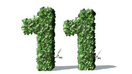 Number 11 alphabet of green ivy leaves Standard-Bild
