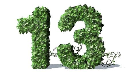 number 13: Number 13 alphabet of green ivy leaves