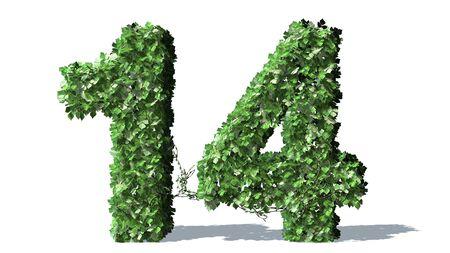 number 14: Number 14 alphabet of green ivy leaves