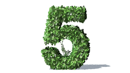 Number 5 alphabet of green ivy leaves Banco de Imagens - 40075572