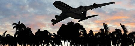 tropical beach panoramic: Modern Passenger airplane in flight over palm on the beach in sunset Stock Photo