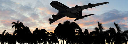 tarpaulin: Modern Passenger airplane in flight over palm on the beach in sunset Stock Photo