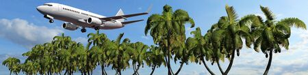 tarpaulin: Passenger airplane in flight over palm trees Panorama of a tropical Iceland Stock Photo