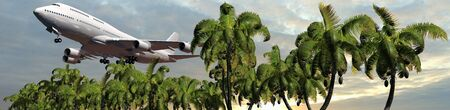 horizon over water: Passenger airplane in flight over palm trees Panorama of a tropical Iceland Stock Photo