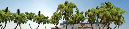 3d boat: Cruise ship and palm trees in sunset Panorama