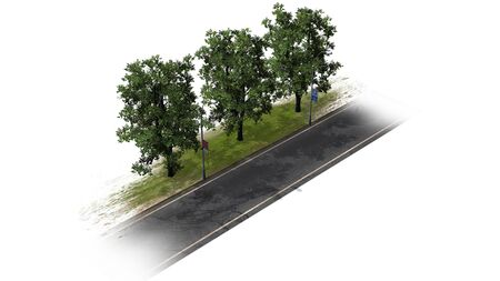 separated: Country road with trees - separated on white background