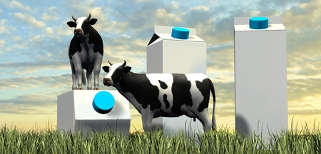 liter: cows and milk packages in grass in the sunset