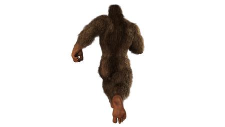 Sasquatch - Bigfoot seperated on white background