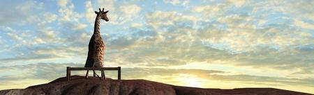 Giraffe on a mountain top sit on a bench at sunset Standard-Bild