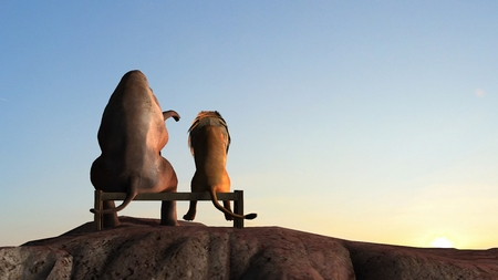 Elephant and lion on a mountain top sit on a bench at sunset Standard-Bild