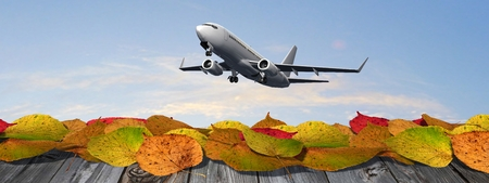 passenger airplane starts in the sky behind Colorful autumn leaves on wood