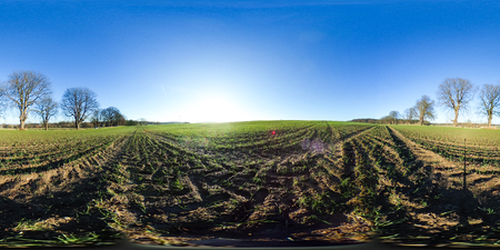 360 degrees spherical panorama of agricultural fields in autumn with blue sky