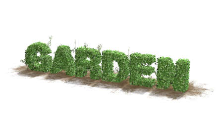 grass area: Garden text from green ivy leaves on white background