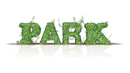 grass area: Park  logo from green ivy leaves  separated on white background