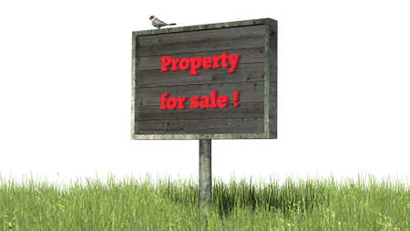 property for sale: Sign in grass Property for sale - separated on white BG