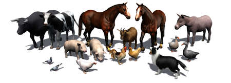 separated: Farm Animals - separated on white background