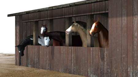 Horses in barn - isolated on white background Banco de Imagens - 106023604