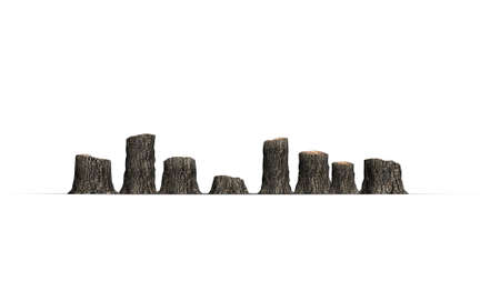 several tree stumps - isolated on white background