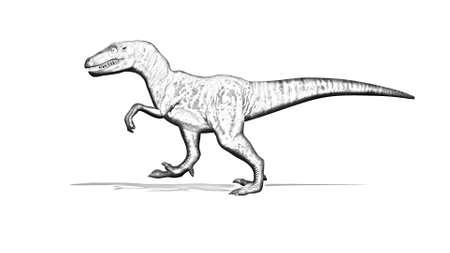 Dinosaur - Velociraptor - cartoon silhouette