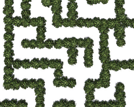 Boxwood labyrinth isolated on white background Banque d'images - 118541375