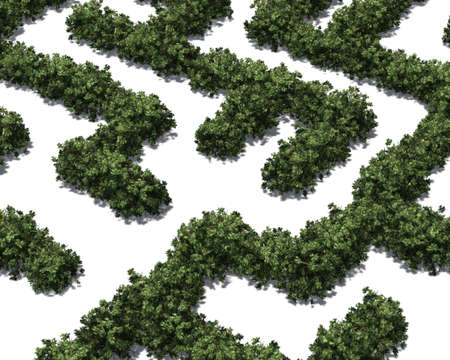 Boxwood labyrinth isolated on white background Banque d'images - 118541376