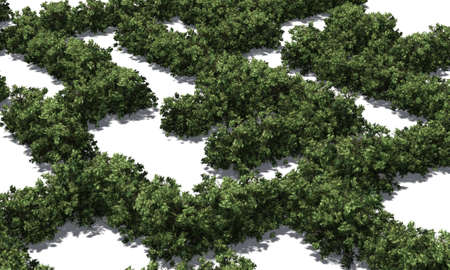 Boxwood labyrinth isolated on white background Banque d'images - 118541377