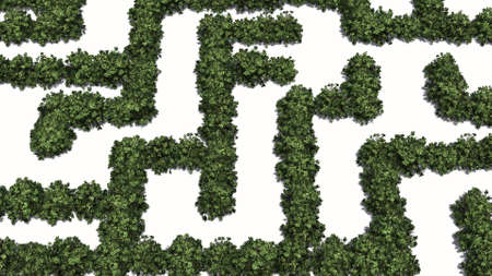 Boxwood labyrinth isolated on white background Banque d'images - 118541379