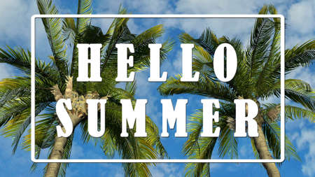 Text - Hello Summer - Palm trees against blue sky background, Tropical holiday concept Stock Photo