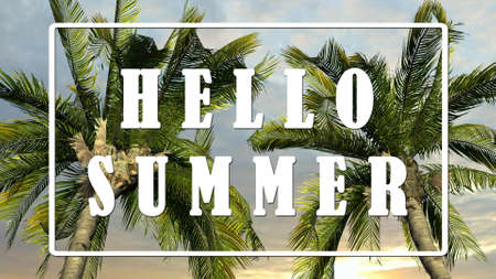 Text - Hello Summer - Palm trees against sky background, Tropical holiday concept