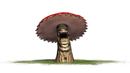angry mushroom on a green area - separated on white background