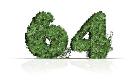 Number 64 created of green ivy leaves - isolated on a white background 版權商用圖片