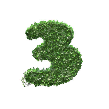 Number 3 created of green ivy leaves - isolated on a white background
