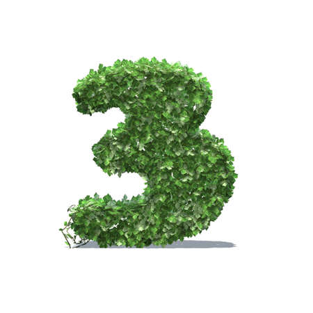 Number 3 created of green ivy leaves with shadow on the floor - isolated on a white background