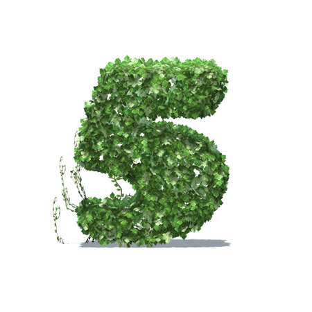 Number 5 created of green ivy leaves with shadow on the floor - isolated on a white background