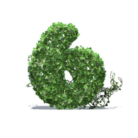 Number 6 created of green ivy leaves with shadow on the floor - isolated on a white background
