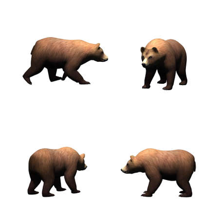 Set of brown bear - isolated on white background Stock Photo