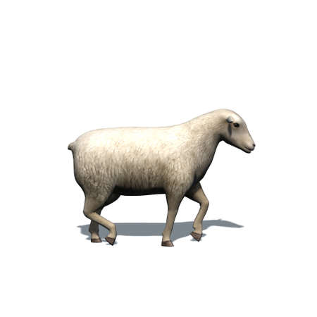 Farm animals - sheep with shadow on the floor - isolated on white background - 3D illustration Stock fotó
