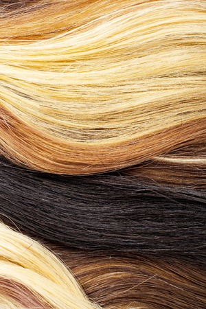 Real woman hair texture. Human hair weft, Dry hair with silky volumes. Real european human hair wallpaper texture. Brown blond dark blonde and black. Stock Photo