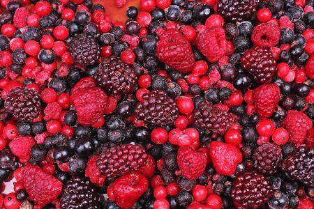 背景として冷凍ミックスベリー。ブルーベリー、黒ラズベリー果実、カシス桑模様。 写真素材