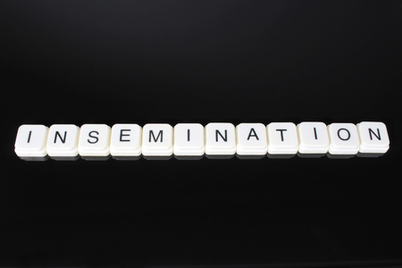 Insemination,text word title caption label cover backdrop background. Alphabet letter toy blocks on black reflective background. White alphabetical letters. White educational toy block with words on mirror board table. Black.