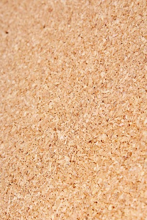Corkwood texture pattern background. Cork wood. Wooden texture closeup. Pattern texture.