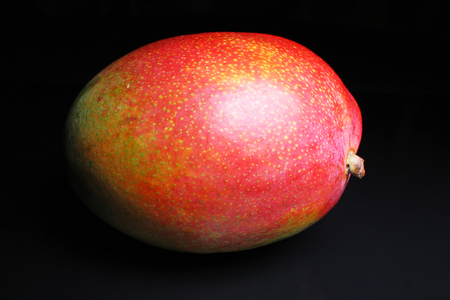 Whole mango on black reflective studio background. Isolated black shiny mirror mirrored background for every concept..
