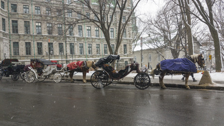 Horse drawn carriage  in the heart of Old Quebec on a winter day with snow.