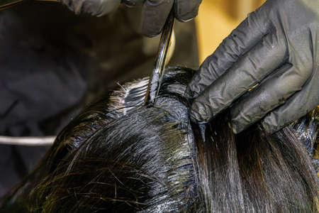 Hair dye color applied on the scalp by a hairdresser wearing black rubber gloves. At-home hair coloring styling with a solid level of black paint mix coverage, using a brush on the hair roots.